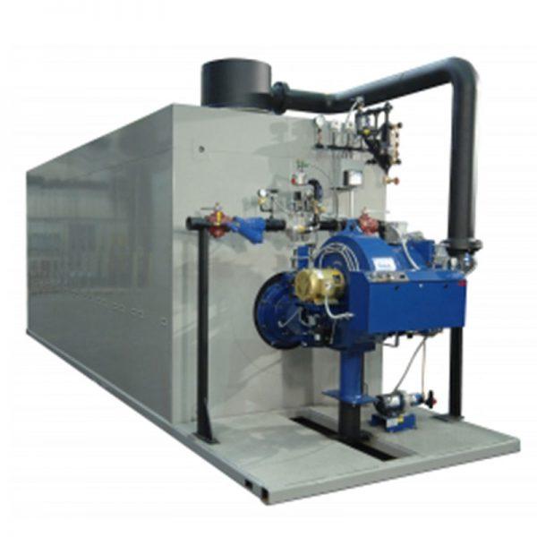 RW Series Steam Forced Draft Boiler